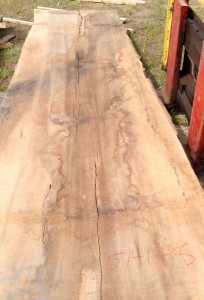 Laurel Oak Slabs
