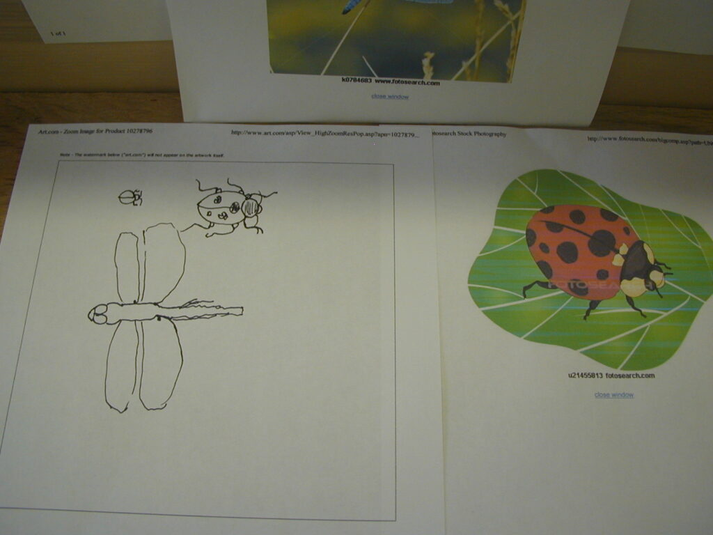 Printed ladybug from the internet